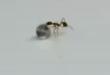 فيديو: حتى الحشرات.. نملة تحاول سرقة حجر ألماس