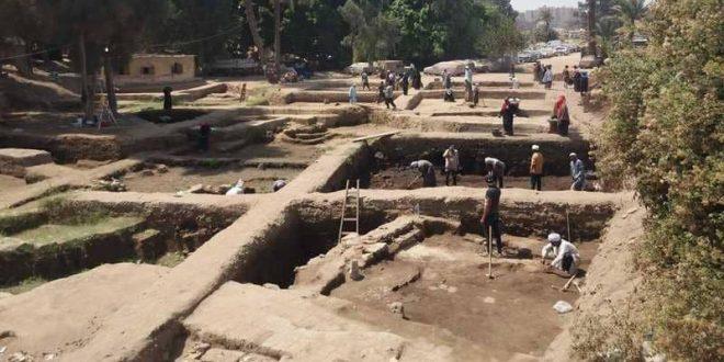 """مقابر لـ""""قطط محنطة"""".. كشف أثري جديد في مصر"""