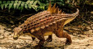 اكتشاف حفريات لديناصور في صحراء جنوب البرازيل