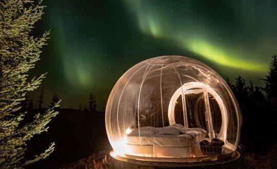 فقاعات زجاجية داخل الغابة أحدث أشكال الفنادق بأيسلندا ..فى زمن الكورونا