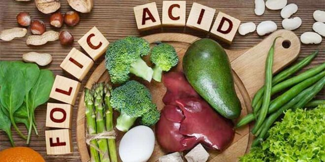 فوائد حمض الفوليك على صحة جسمك