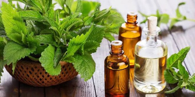 علاج الالتهابات الفيروسية بـ 7 أنواع من الأعشاب المضادة للفيروسات