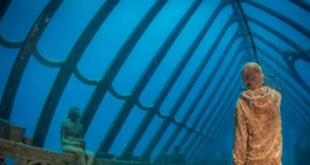 أول متحف فنى تحت الماء فى أستراليا.. يسمح للزائرين بالسباحة بين المعروضات