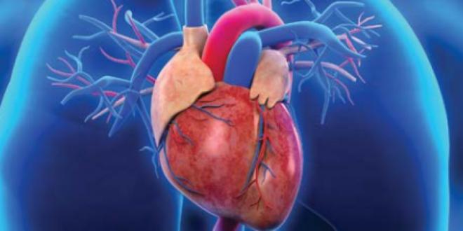 التوتر والغضب يزيد من فرص الإصابة بقصور القلب