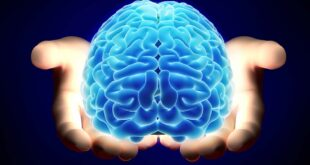 كيف يؤثر كورونا على المخ ويسبب السكتة الدماغية وتلف الأعصاب؟