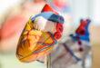 5 أطعمة غنية بأحماض أوميجا 3 الدهنية لصحة قلبك