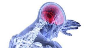 تلف الدماغ الناتج عن نقص الأكسجين سببه دفاع المخ عن نفسه