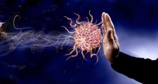 دراسة جديدة.. الأجسام المضادة للناجين من كورونا تقى من المرض لمدة 4 أشهر فقط
