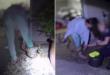 شرطية أسترالية تنقذ امرأة من ثعبان ضخم ألتف حول قدمها