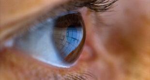 علماء بأيرلندا يطورون علاجًا جينيًا جديدًا لأمراض العيون