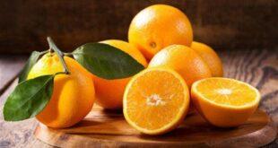 فوائد البرتقال على صحة الجسم .. يقى من الفيروسات والجراثيم