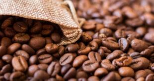 وصفات طبيعية من القهوة للعناية بالشعر.. تمنع التساقط وتعزز نموه