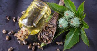 وصفات طبيعية من زيت الخروع لزيادة نمو الشعر