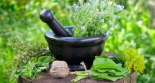 أعشاب تحافظ على صحة قلبك وتحمى من الجلطات القلبية