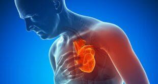 الدهون البنية بالجسم تحمى من أمراض القلب والسكر