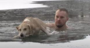 صحفى ينقذ كلب من الغرق فى بحيرة متجمدة بروسيا