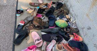 قط يسرق أحذية الجيران.. تعرف على رد فعل مالكته بعد اكتشاف المسروقات
