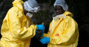 مكتشف إيبولا يحذر من فيروس قاتل فى الغابات الإفريقية