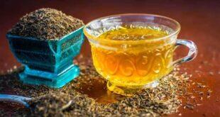 5 أسباب تجعل الشمر مشروبك المفضل بعد تناول الطعام