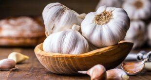 5 فوائد صحية للثوم..منها الوقاية من أمراض القلب وخفض الدهون في الدم
