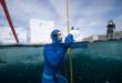 روسى يحطم رقما قياسيا بالغطس 80 مترا تحت الجليد في دقيقتين