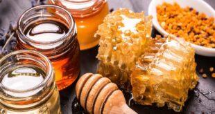 فوائد العسل.. تقليل مخاطر الإصابة بالسرطان وأمراض القلب