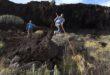 قفزة الراعى.. تعرف على الرياضة الشعبية الشهيرة فى جزر الكنارى