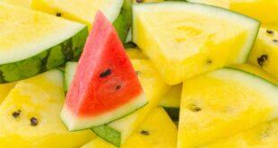 هل تختلف القيمة الغذائية بين البطيخ الأصفر والأحمر؟