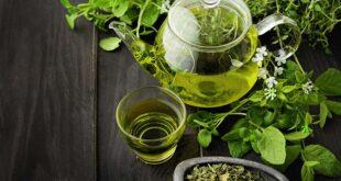 الشاي الأخضر وعصير الليمون.. مشروبات طبيعية تحمى البشرة وتؤخر الشيخوخة