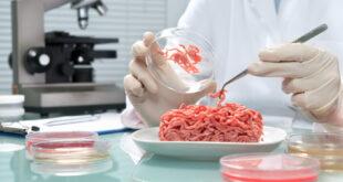 ما هي اللحوم المصنّعة في المختبرات؟ وهل هي صحية؟