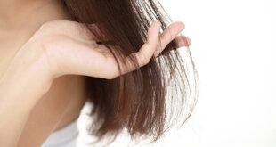 العناية بالشعر.. 4 أخطاء تجنبيها عند اختيار الشامبو المناسب لنوع شعرك