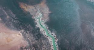 بحيرة على شكل ورقة شجر.. مصور إماراتى يبرز جمال الطبيعة فى بحيرة بأبوظبى