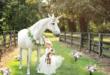 مؤسسة بريطانية تحقق حلم طفلة مصابة بالسرطان للقاء الحصان أحادى القرن الخيالى