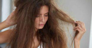 العناية بالشعر.. 4 ماسكات طبيعية لإصلاح الشعر التالف فى الشتاء